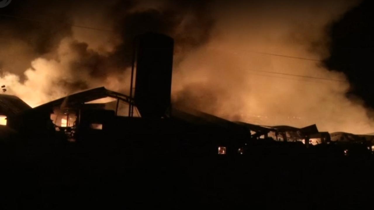 Vijftienduizend kippen dood bij brand in Orvelte