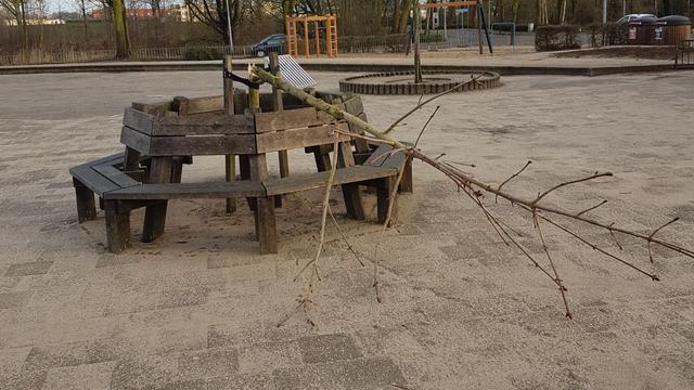 Anne Frankboom bij school in Doesburg vernield
