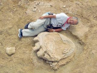 Afdruk behoort toe aan Titanosaurus
