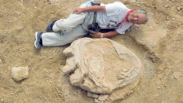Enorme voetafdruk dinosaurus ontdekt in Mongolië