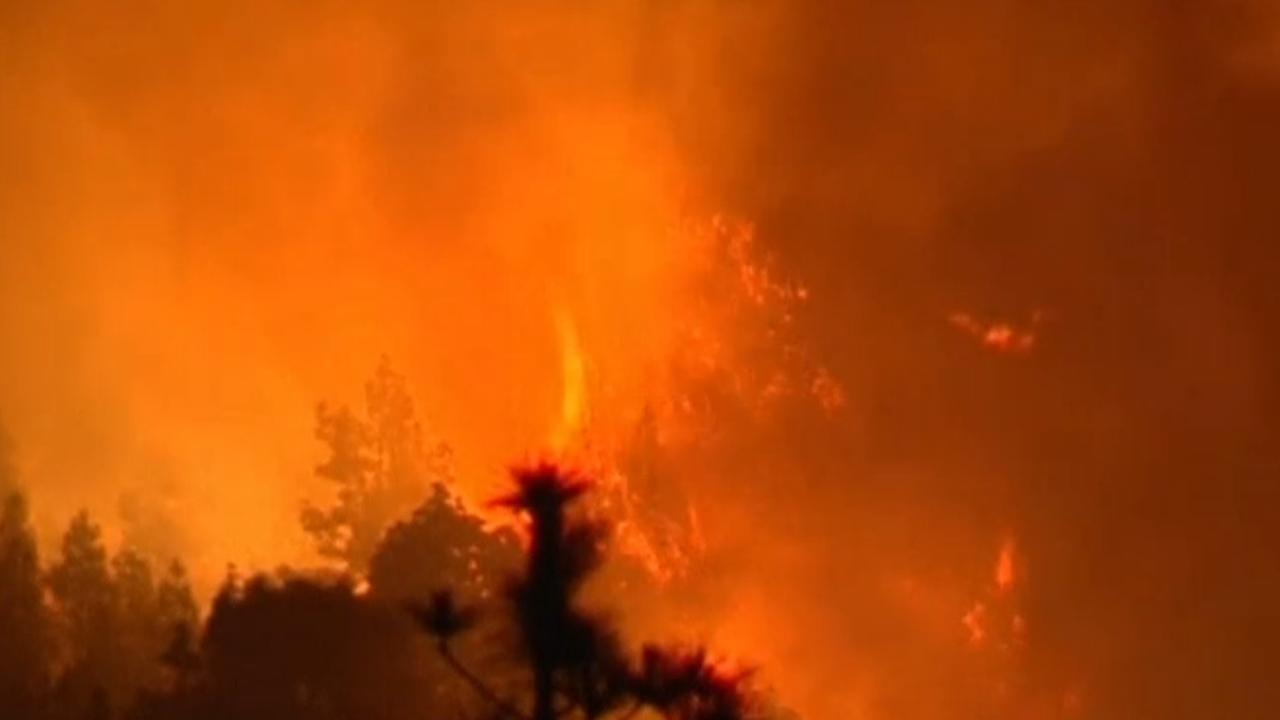 Bosbrand op La Palma door brandend toiletpapier
