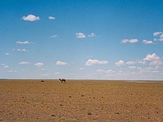 Gobi-woestijn is 30 miljoen jaar oud