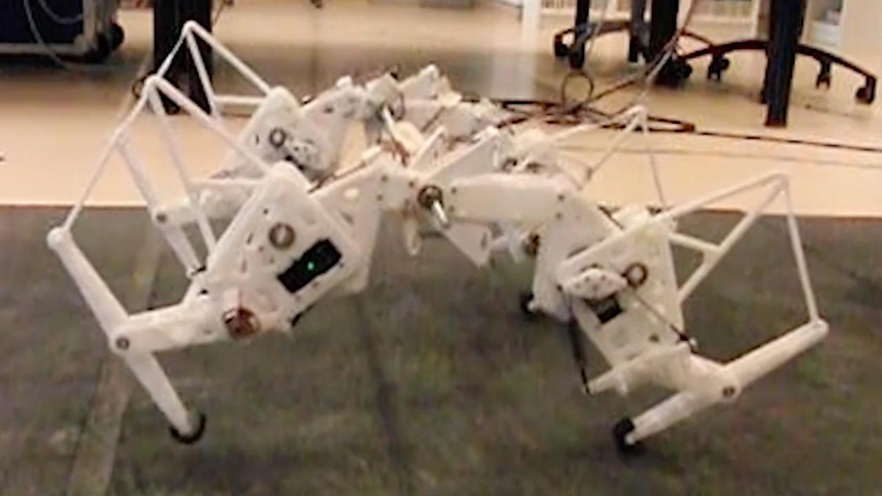 Robot-cheeta beweegt net als echt jachtluipaard