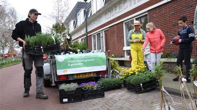 Gemeente wil minstens veertigduizend tegels omruilen voor gratis tuinplanten