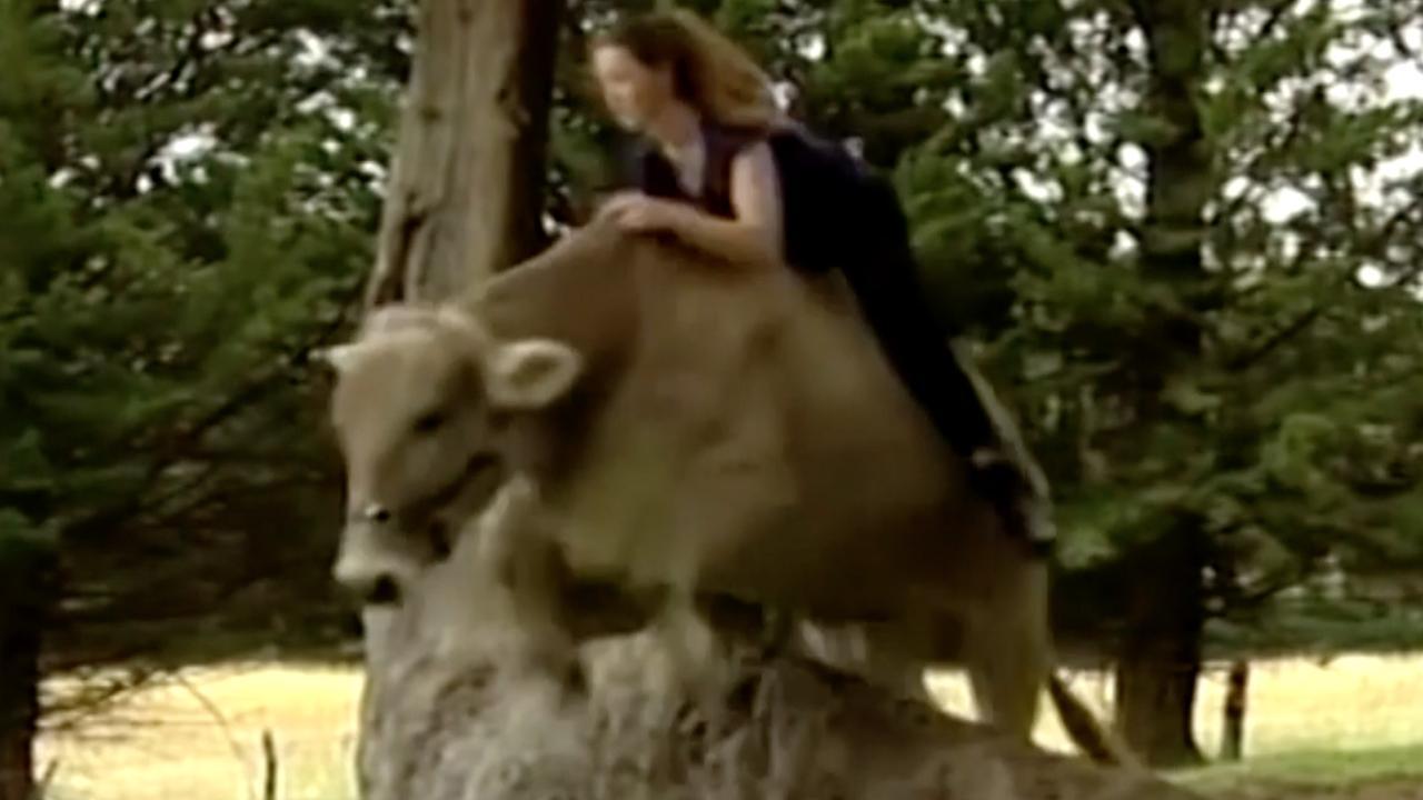 Meisje uit Nieuw-Zeeland rijdt op koe omdat ze geen paard mag
