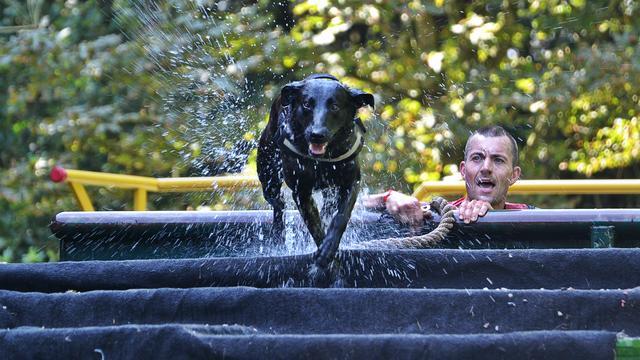 130 teams strijden tijdens 25e editie Hondenbiathlon