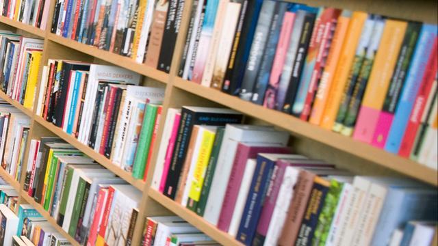 Auke Hulst wint voor tweede keer Harland-romanprijs