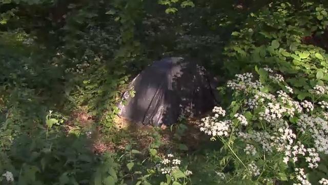 Kamperende Roemenen terug in Zuidoost