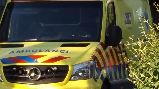 Automobiliste gewond na botsing tegen boom