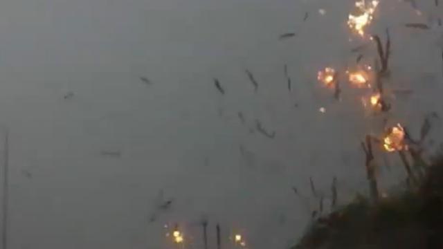 Telefoonpaal ontploft door blikseminslag in Chicago