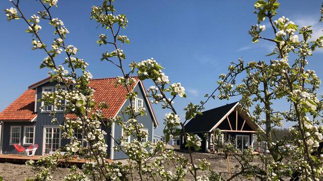 Wonen in een Zweeds ecodorp bij Almere: 'Ik heb hier een vakantiegevoel'