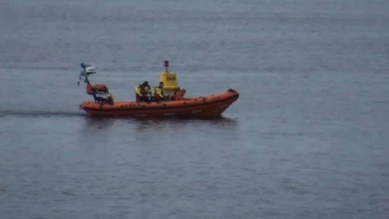 Duiker in Zeeuwse Scharendijke vermist
