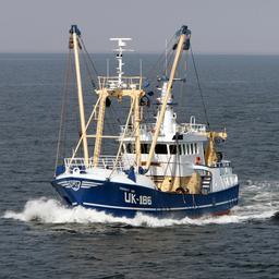 Perspectief voor Nederlandse visserijsector wordt steeds slechter