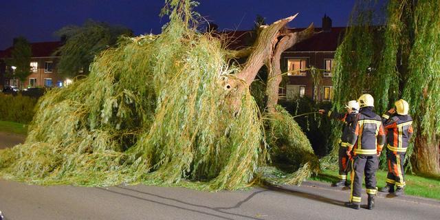 Omgevallen boom zorgt voor verkeersoverlast Meerburgerkade