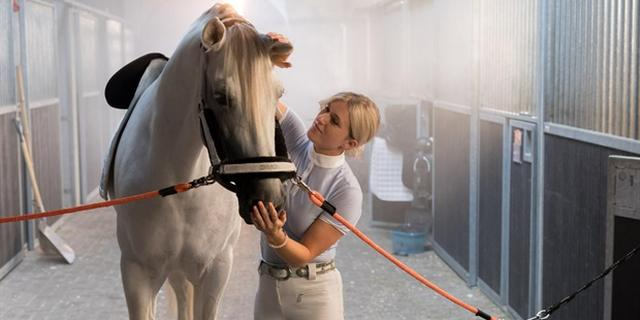 Britt Dekker: 'Mijn paard George heeft mij gered'