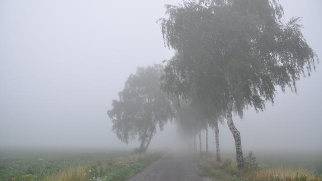 Het weer: Vanavond in noordoosten opnieuw kans op mist
