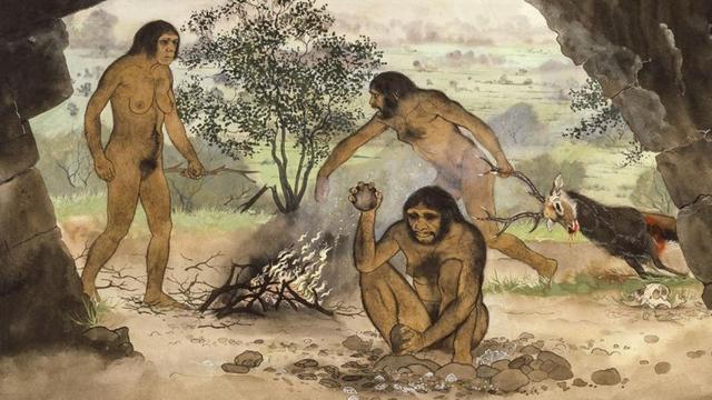 'Primitieve mensen werden slimmer door vlees te snijden'