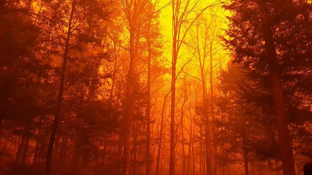 Dodental door natuurbranden Tennessee loopt op