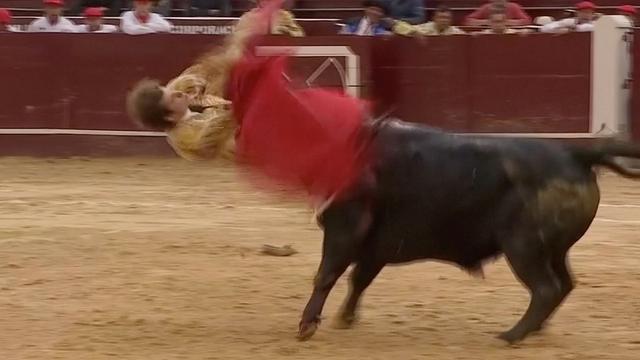 Spaanse matador aangevallen door stier tijdens gevecht