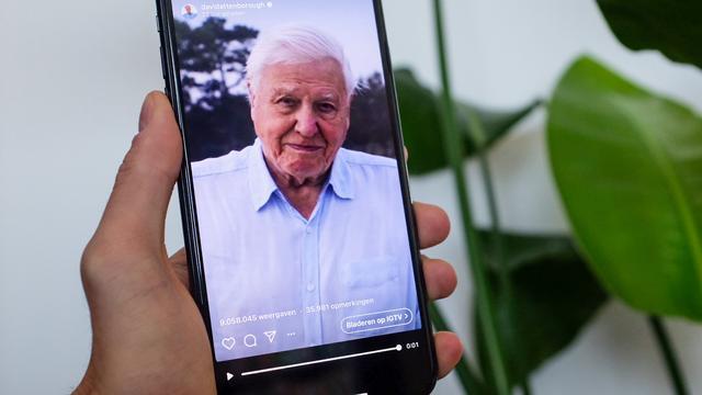 Goed nieuws: Attenborough breekt Instagram-record | Rat krijgt medaille