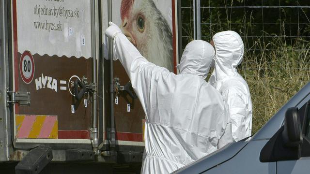 71 mensen omgekomen in vrachtwagen Oostenrijk