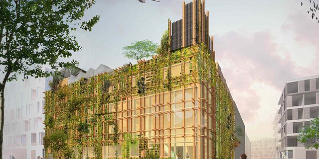 Biobased materialen (zoals stro en paprika) moeten woningbouw verduurzamen
