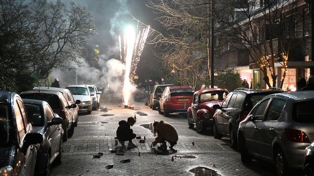 Eigenaar van hond neergestoken na botsing.