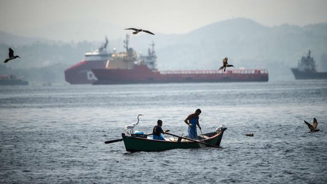 Olympisch zeilwater bezaaid met duizenden dode sardines