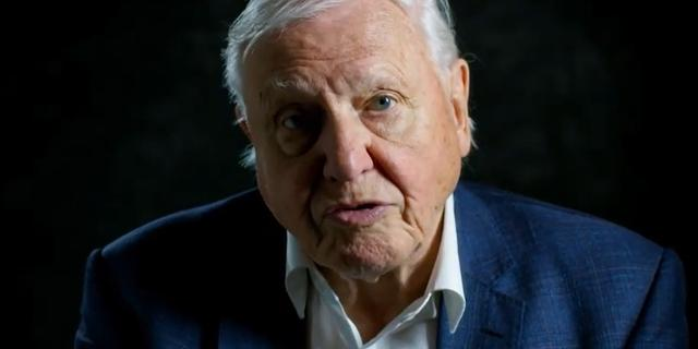 Oud-recordhouder David Attenborough stopt na twee maanden met Instagram