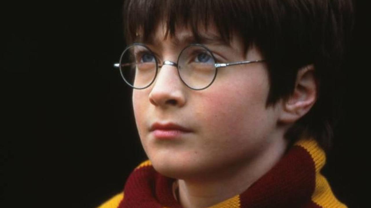 Potter harry Hogwarts Legacy