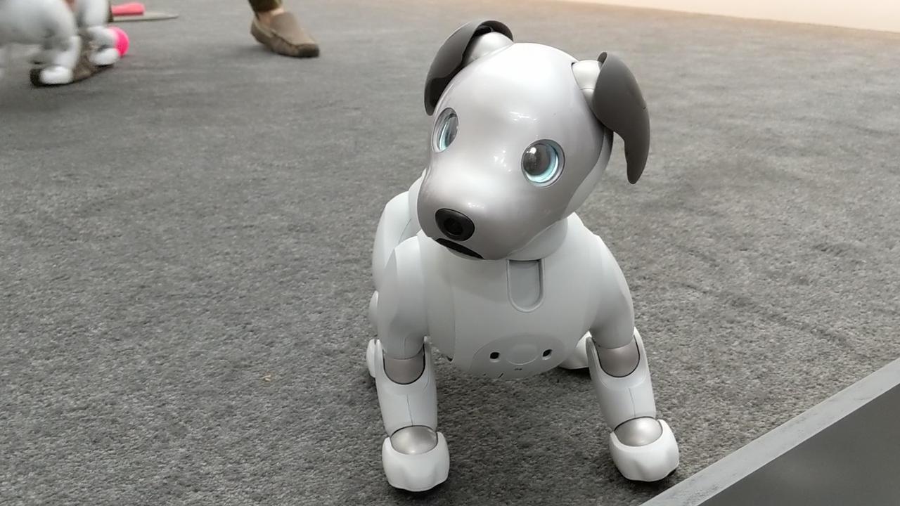 De gekste robots op gadgetbeurs CES