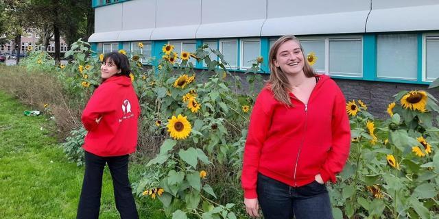 Studenten krijgen betaalbare woonruimte in ruil voor vrijwilligerswerk
