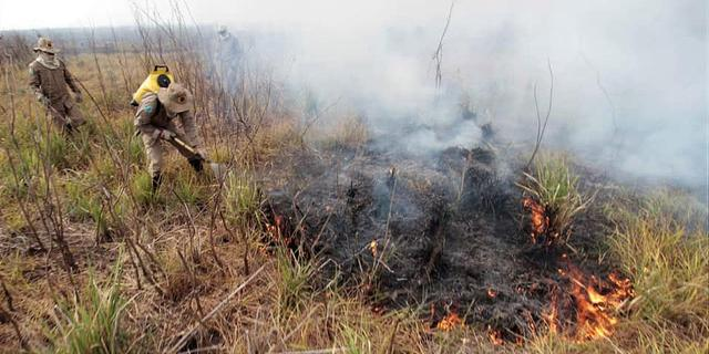 Braziliaanse branden bedreigen 's werelds grootste drasland
