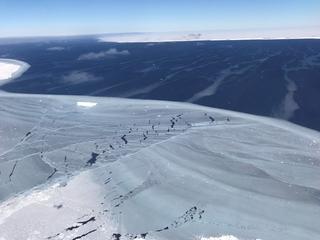 Jagen vanaf nu verboden in Antarctica