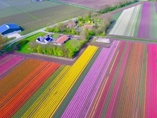 Vooral met bloemen worden betere zaken gedaan