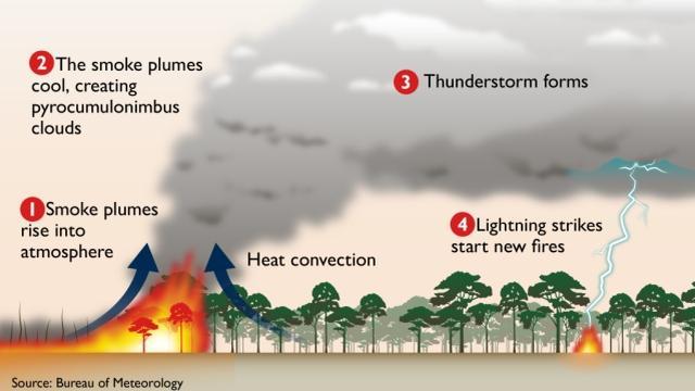 Zeer hete bosbranden kunnen hun eigen weerssystemen vormen, inclusief onweerswolken. Bosbranden kunnen daardoor sneller verspreiden, zoals deze schematische afbeelding laat zien.