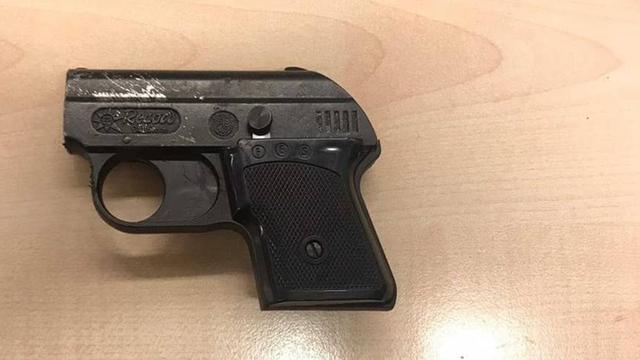 Man met alarmpistool aangehouden op station Leiden Lammenschans