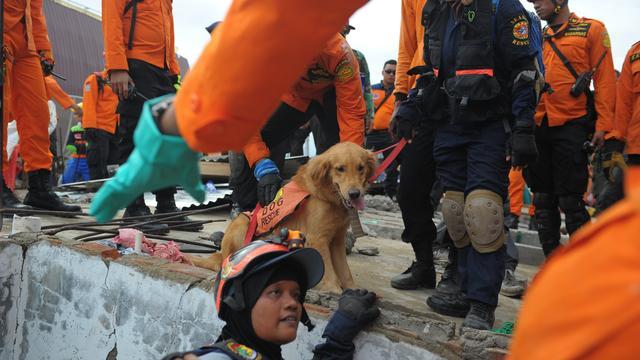 43.000 mensen dakloos na aardbeving Indonesië