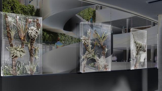 Mini-ecosysteem moet stress op kantoor en in ziekenhuis verminderen