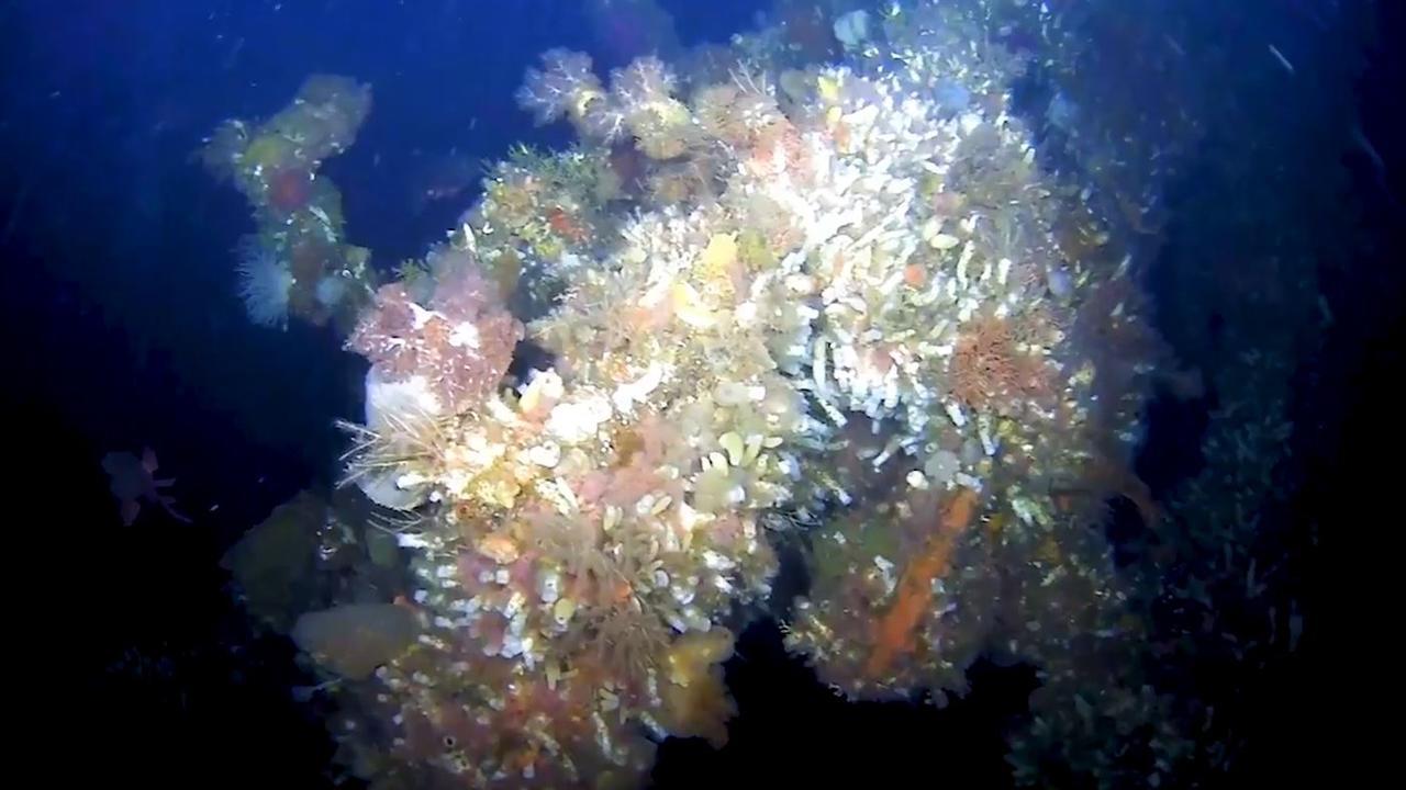 Deel legendarisch oorlogsschip op zeebodem bij Alaska gevonden