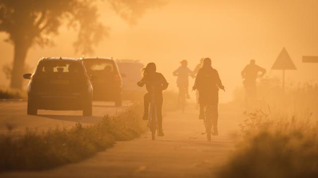 Wees alert op dichte mist als je dinsdagochtend de weg op gaat