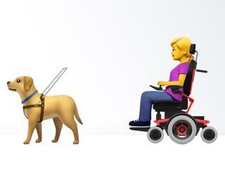 Voorstel voor rolstoelen en blindengeleidehonden