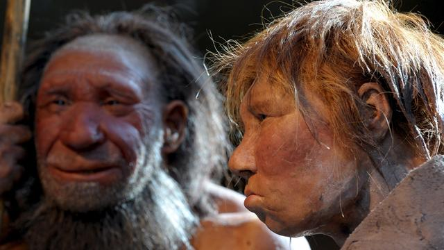Vijf van zes vroege menssoorten stierven uit rond klimaatveranderingen