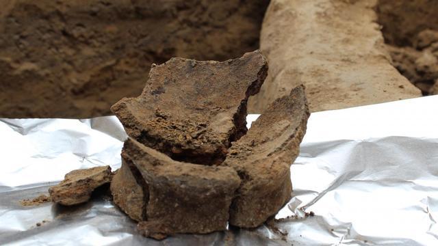 Resten van oudste wijn ter wereld ontdekt in Georgië