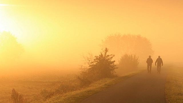Het weer: Na dichte mist volgt zonnige dag