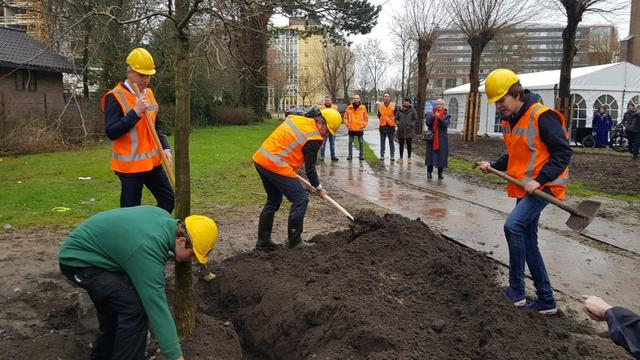 Start aanleg Schilperoortpark met planten boom