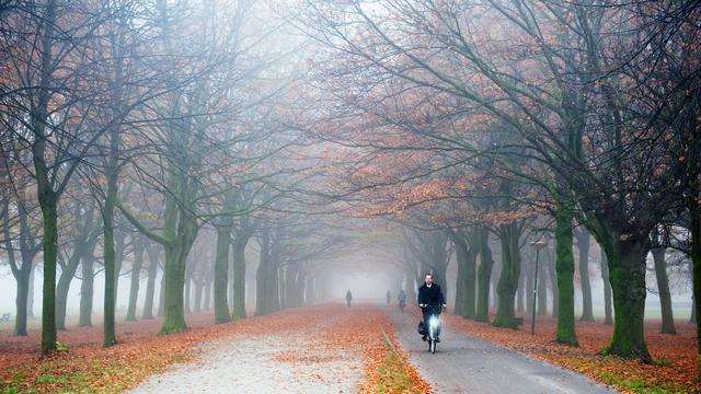 'Zeer dichte mist in weekend'