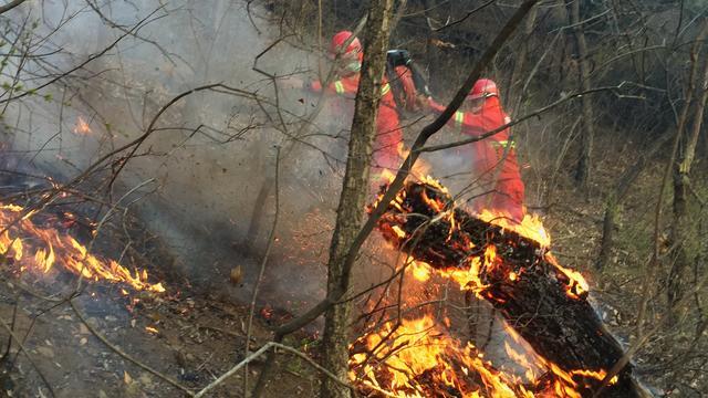 Zeker 30 Chinese brandweerlieden overleden bij bestrijding bosbranden