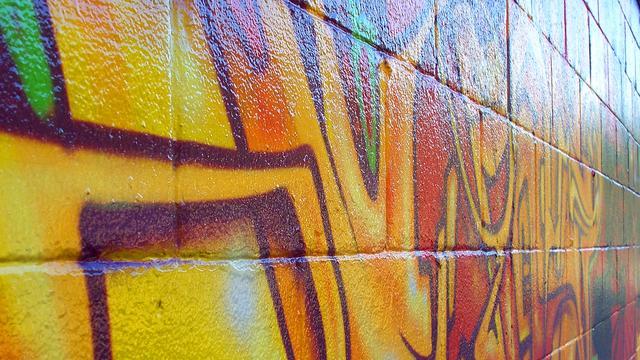 Man bewerkt Goese overheidsgebouwen met graffiti