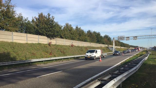 Losgebroken paarden hinderen verkeer op A58